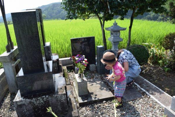 日本人 お墓参り 割合