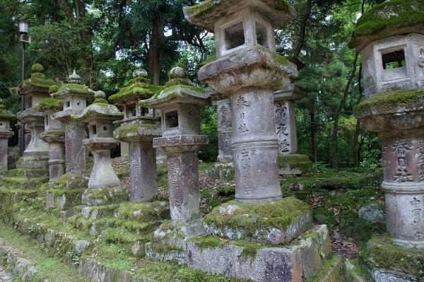 春日燈籠(春日大社)
