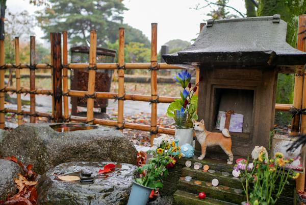ハチ公 青山霊園 墓